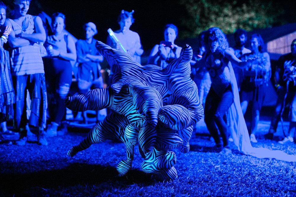 VOENA_SUBSONIC_MUSIC_FESTIVAL_2016_AUSTRALIA-180.jpg