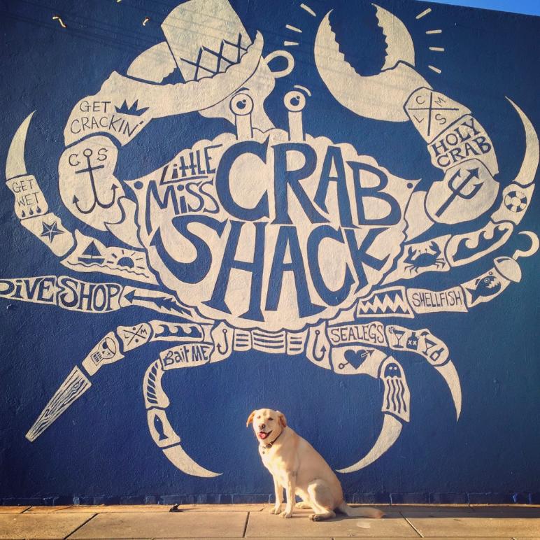 Little Miss Crab Shack