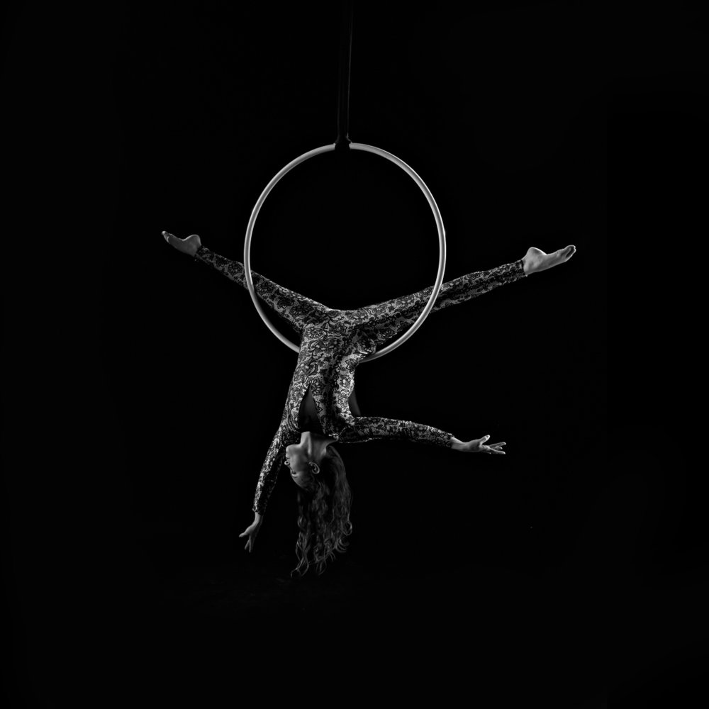 Lyra/Aerial Hoop - A circular metal hoop suspended by a rope-like connector (aka a span set). Artists flow around this apparatus via a series of poses, and the effect is maximized through spinning. Can be rigged from a lower height, and is ideal for champagne pouring services.