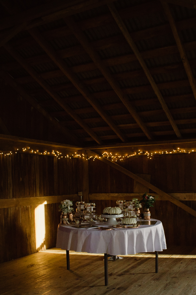 Casstown-Ohio-Wedding-79.jpg