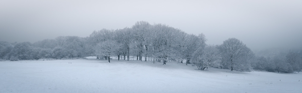 Hampstead Heath Snow 20120205-2.jpg