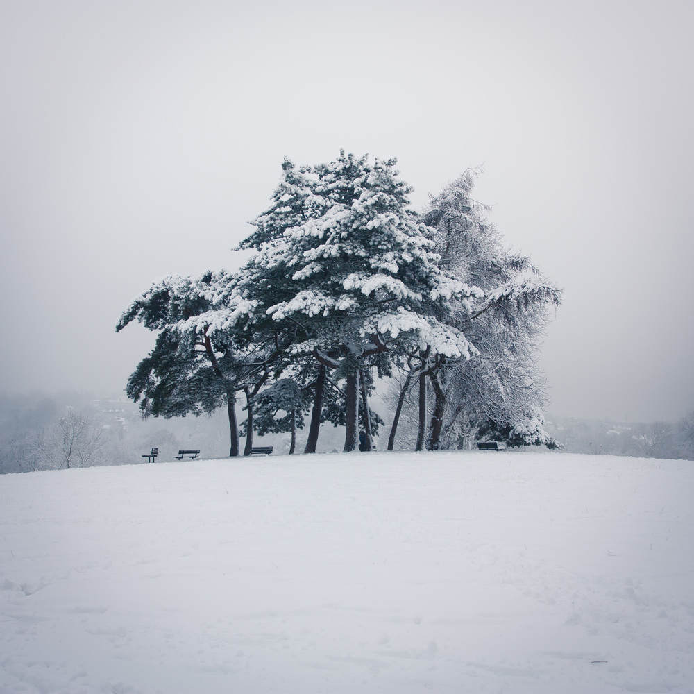 Hampstead Heath Snow 20120205-4.jpg