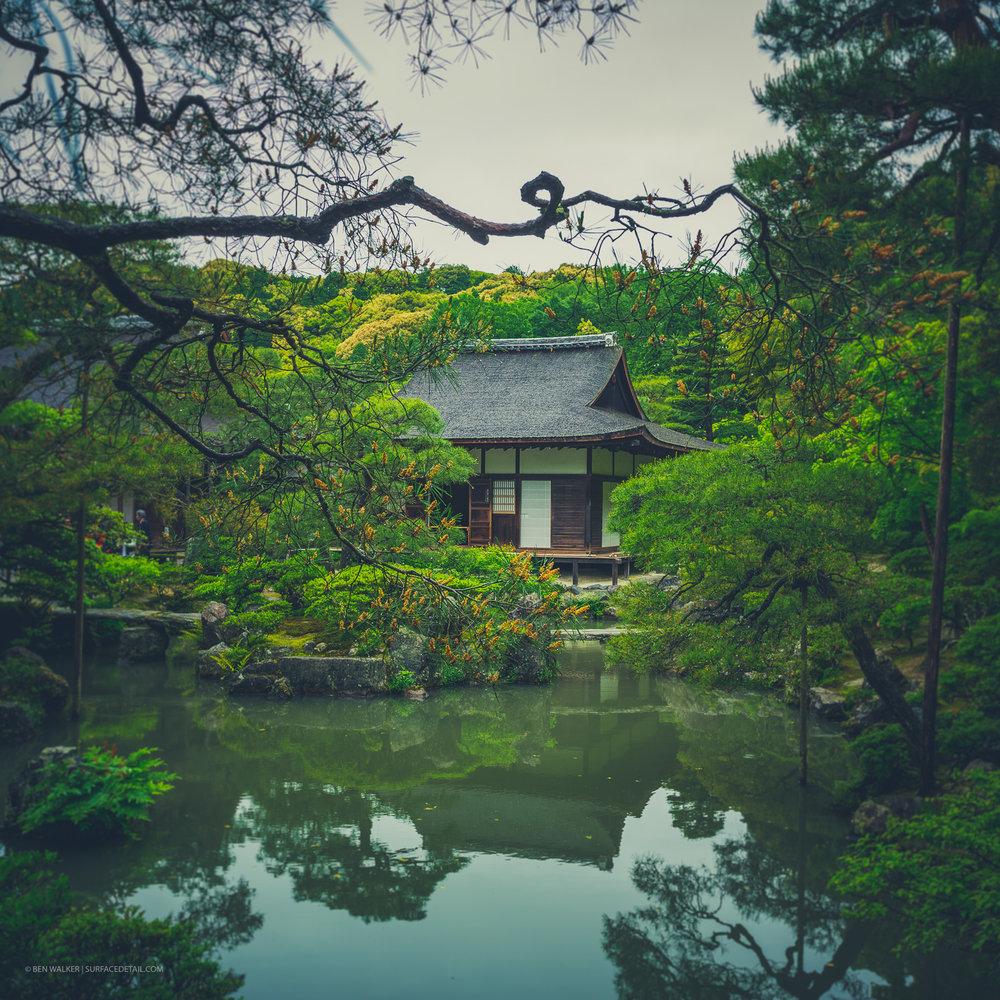 japan_nature_20160510_3.jpg
