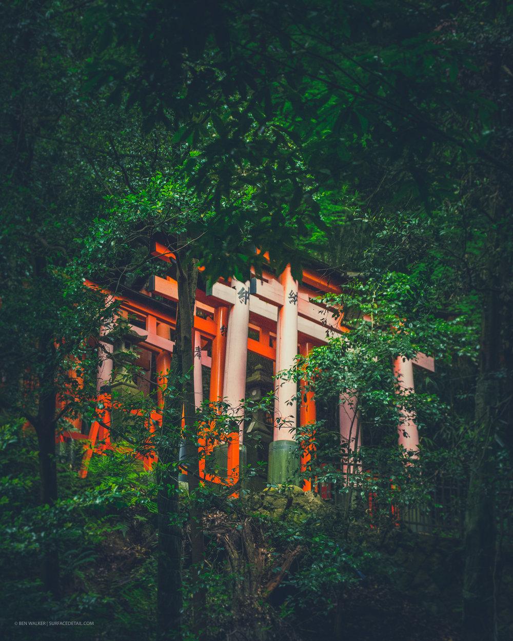 japan_nature_20160511_13.jpg