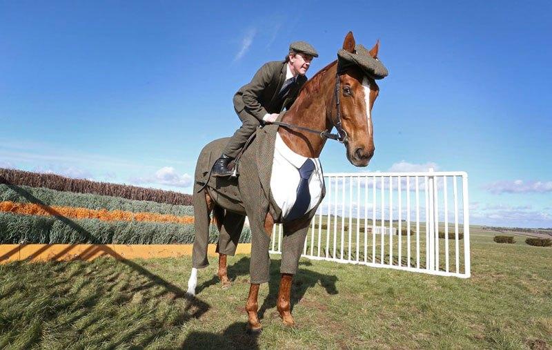 horse-in-a-tweed-suit-looking-absolutely-dapper-3.jpg