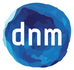 dnm strategic consulting