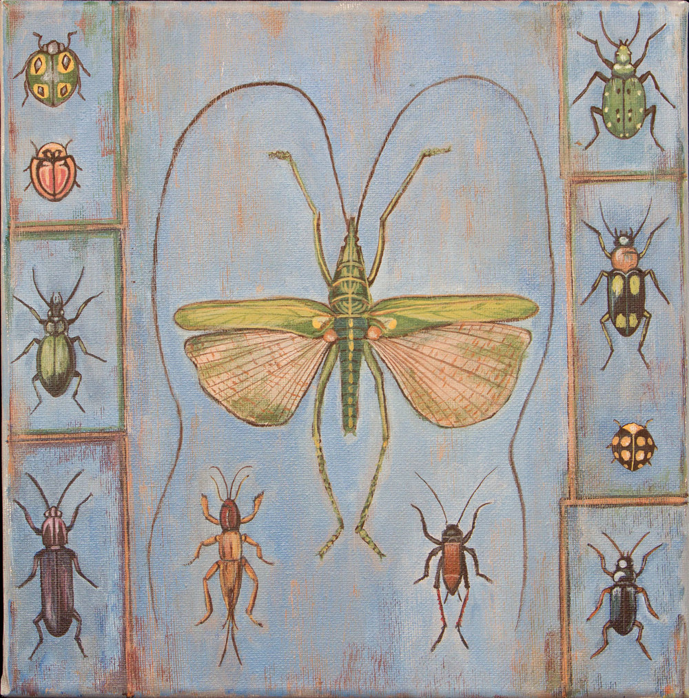 "bug specimen, 12""x12"", acrylic on canvas, 2015"