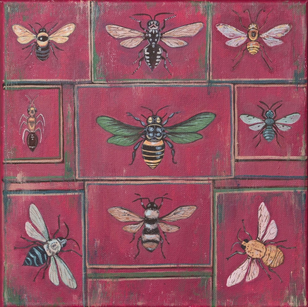 "bee specimen, 12""x12"", acrylic on canvas, 2015"