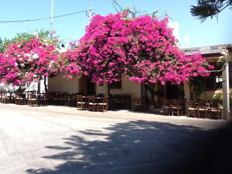 Taverna in Lakonia village (Picture by Yannis Stavrakakis/Facebook)