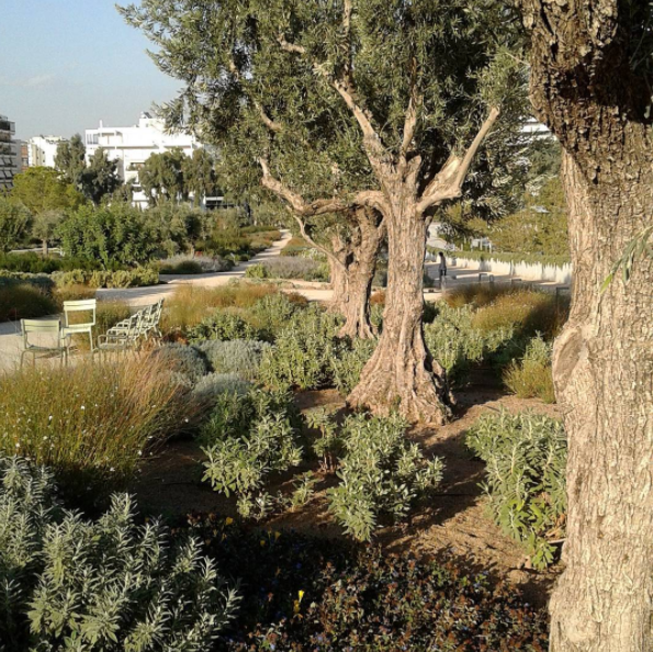 Gardens at the Stavros Niarchos Park (Picture via Instagram/mspyrs)