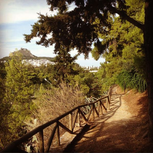 Hidden trails with amazing views at 'Kallimarmaro' (Picture by eirini_trainer/Instagram)