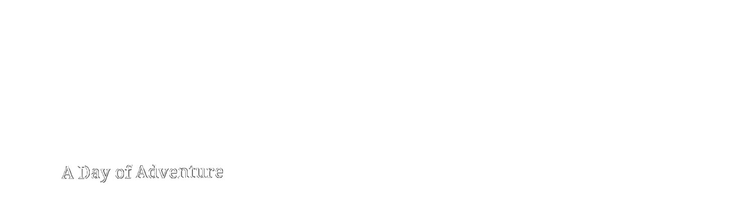 The TravelPorter