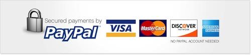 paiement-securise-paypal-visa-mastercard-maestro-cb-cofinoga-aurore-4-etoiles.jpg
