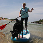 Cola-Crantock-SUP-Dog-Cornwall