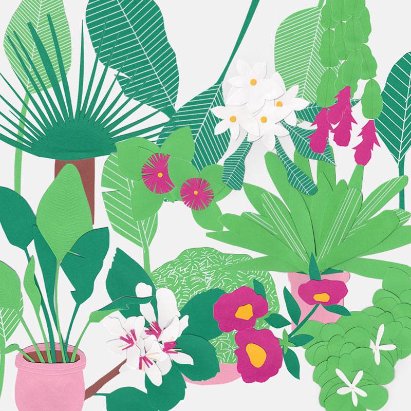 The Small Garden – illustration series