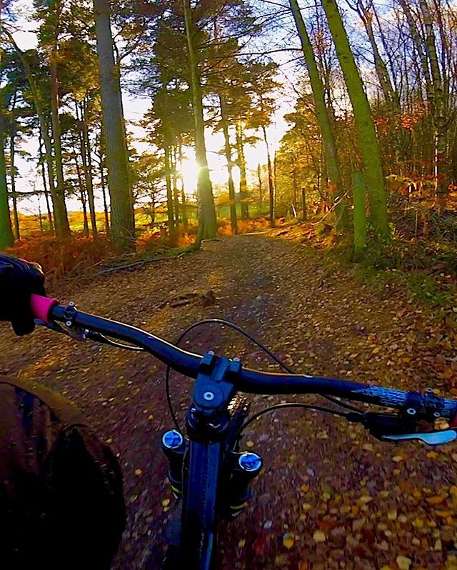 Still from the new video dropping this week, I'm loving how the sun is coming through those trees . . . . . #stillgunnasendit #shreddinit #justgonnasendit #bikesareawesome #lovemybike #wheremybiketakesme #ridemoremtb #ukmtb #mtblifestyle #mtbenduro #looseriders #mtb #mtbporn #mtblife #cyclelife #cycle #cycling #downhillmtb #freeridemtb #enduromtb #getfree #outside #gf_tv #bikeride #mountainbike #instabike #bikesofinstagram #gooutside #freshairandfreedom #instabicycle_feature