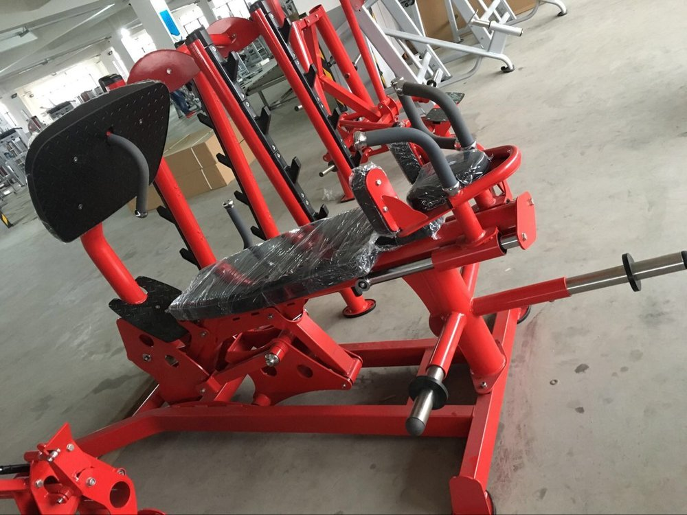 Hoist Dual Action Leg Press