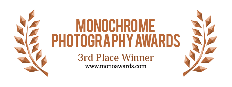 3rd_place_monoawards_2017.png