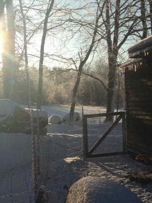 Farm in the winter.jpg