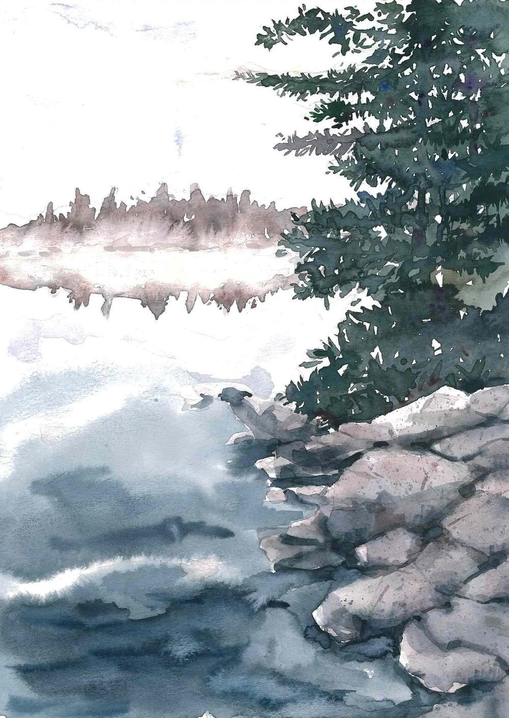 Forked Lake Fog