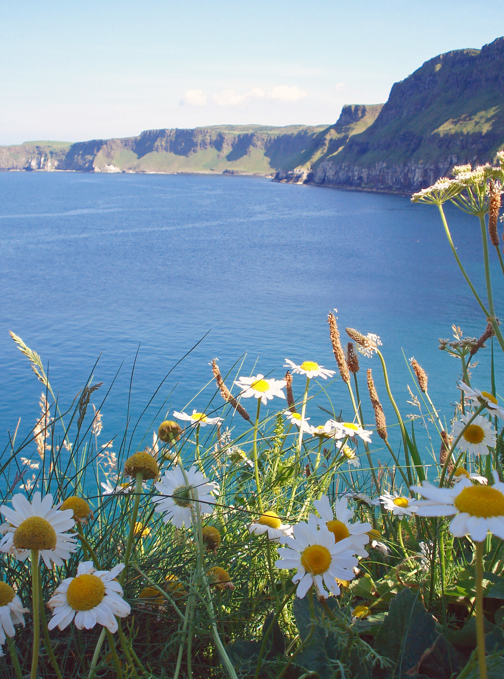 Cliffs, Northern Ireland