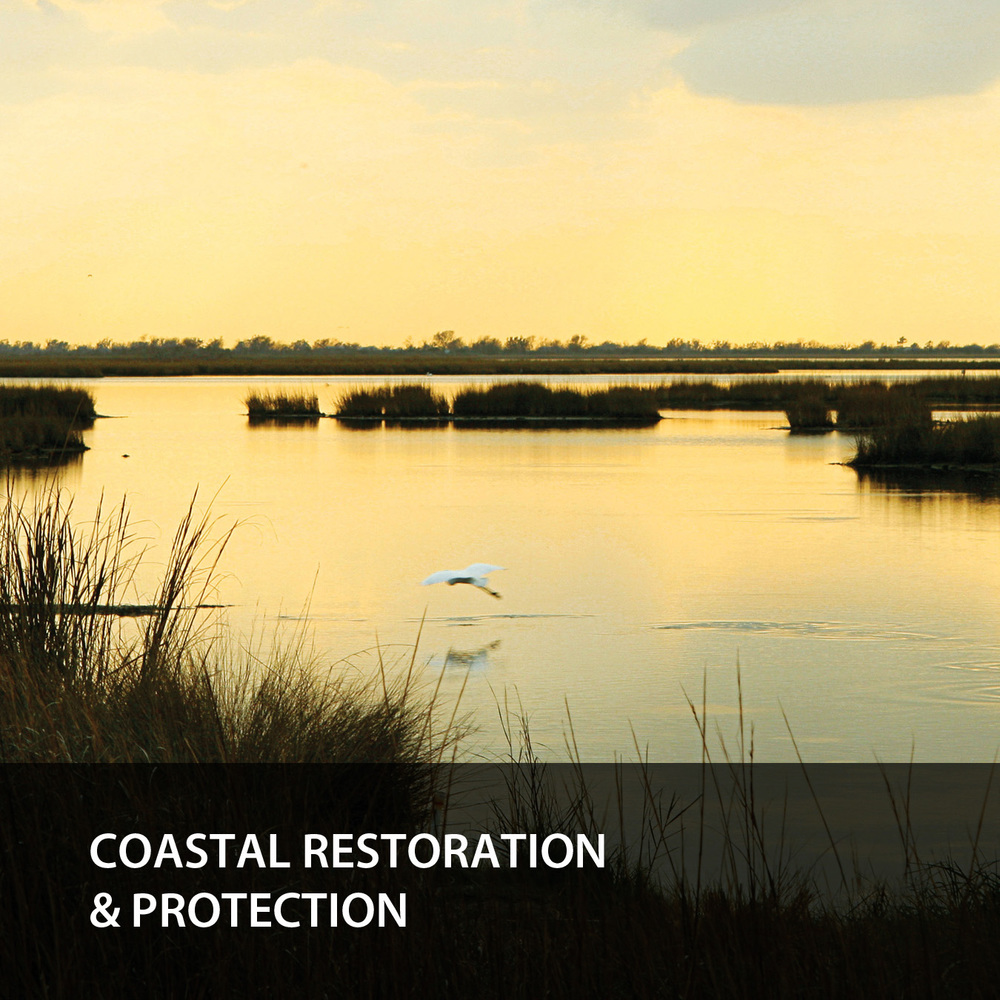 Coastal Restoration & Protections