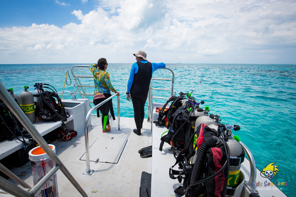 Boat Diver - Whether you've never made a boat dive or you've logged dozens, the PADI Boat Diver Course can benefit almost every diver. Different boats in different parts of the world do things differently. Be prepared for it all.