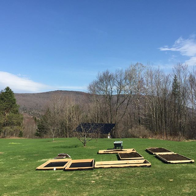 The vegetable garden is taking shape. #veggiegarden #raisedbeds #vermontgarden #shortseasongardening #somuchfun #finallyspring #plantingseason