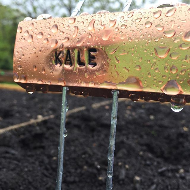 DIY project - veggie garden copper markers. I had so much fun stamping these. #veggielabels #copperyardsigns #metalstamping #diy #rainyday
