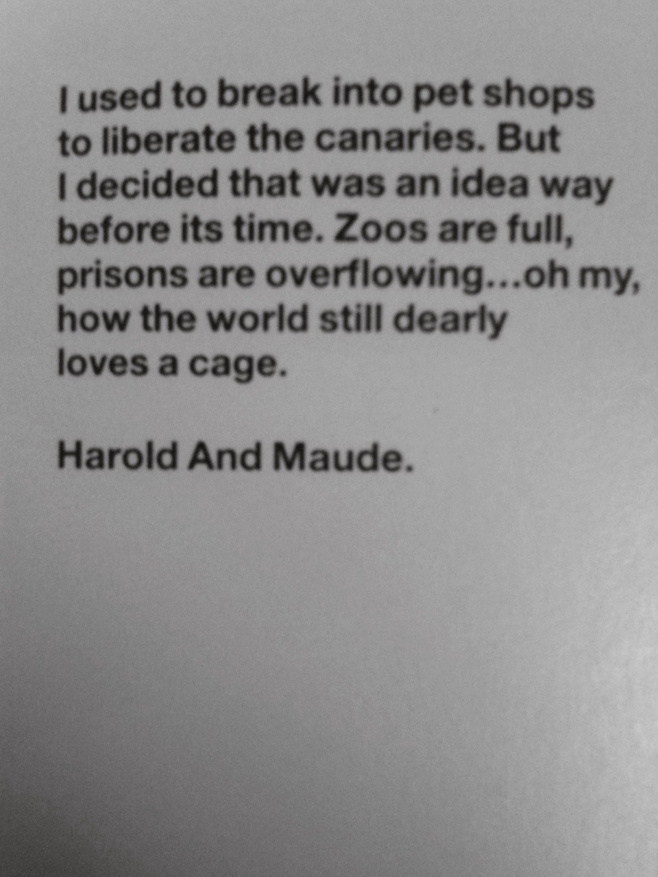 this is by far my favorite line in the movie….    waxandmilk :     Harold and Maude