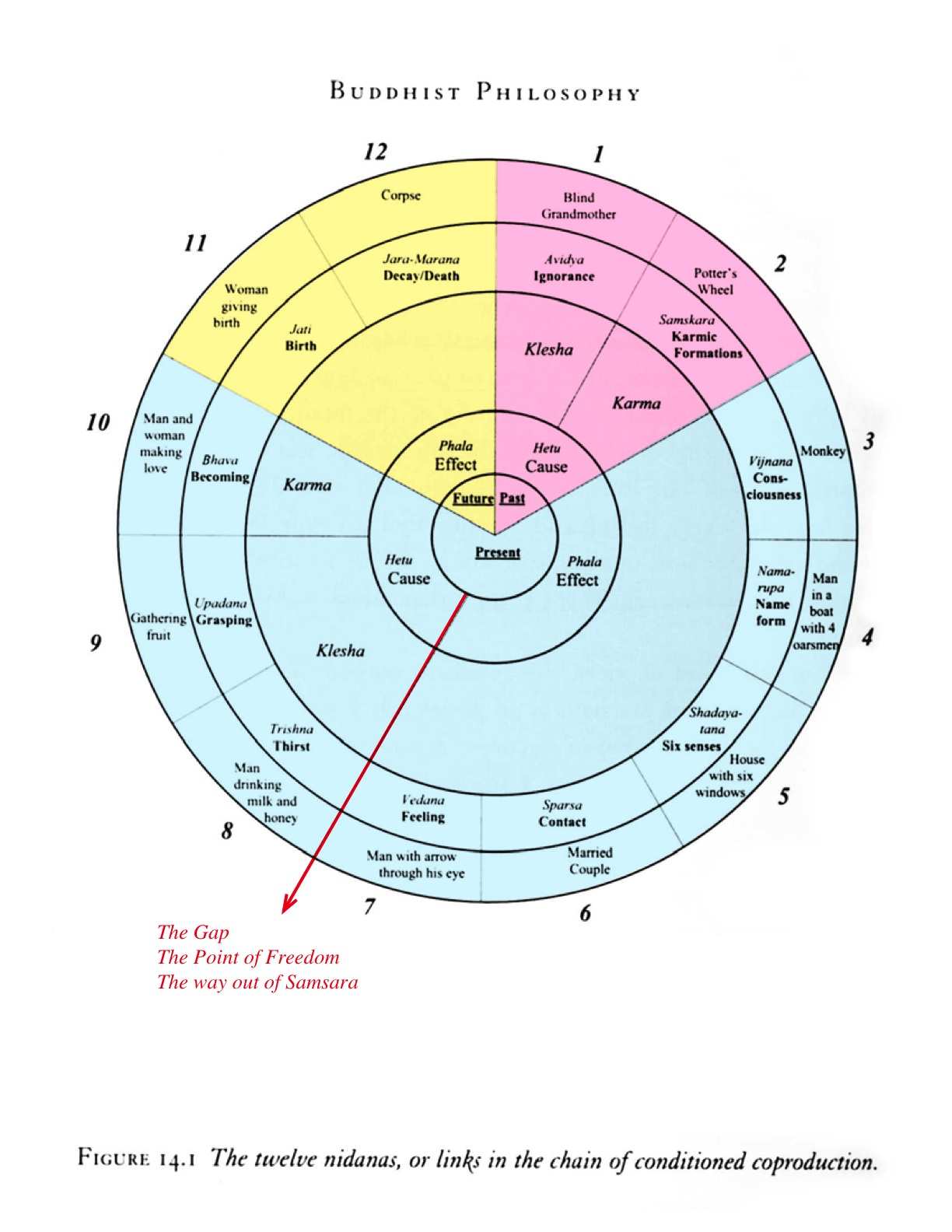 The 12 Nidanas broken down…  (12 links of interdependent origination) in relation to karma.   This is the cycle of samsara as laid out in buddhist terms and also describes what each is as a symbol on the Wheel of Life.     The red arrow is where our meditation takes place.