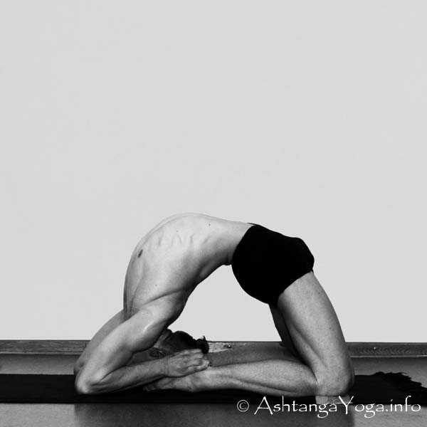 students, this is the pose we headed toward tonight, kapotasana.  you all did so well on the journey and the approach.  always happy to answer questions about the prep and setup for any peak poses we do in class.  ask me anything.