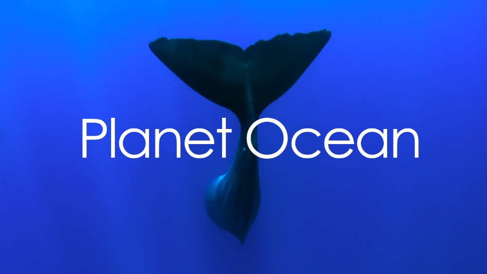 PLANET OCEAN  - Saving our oceans