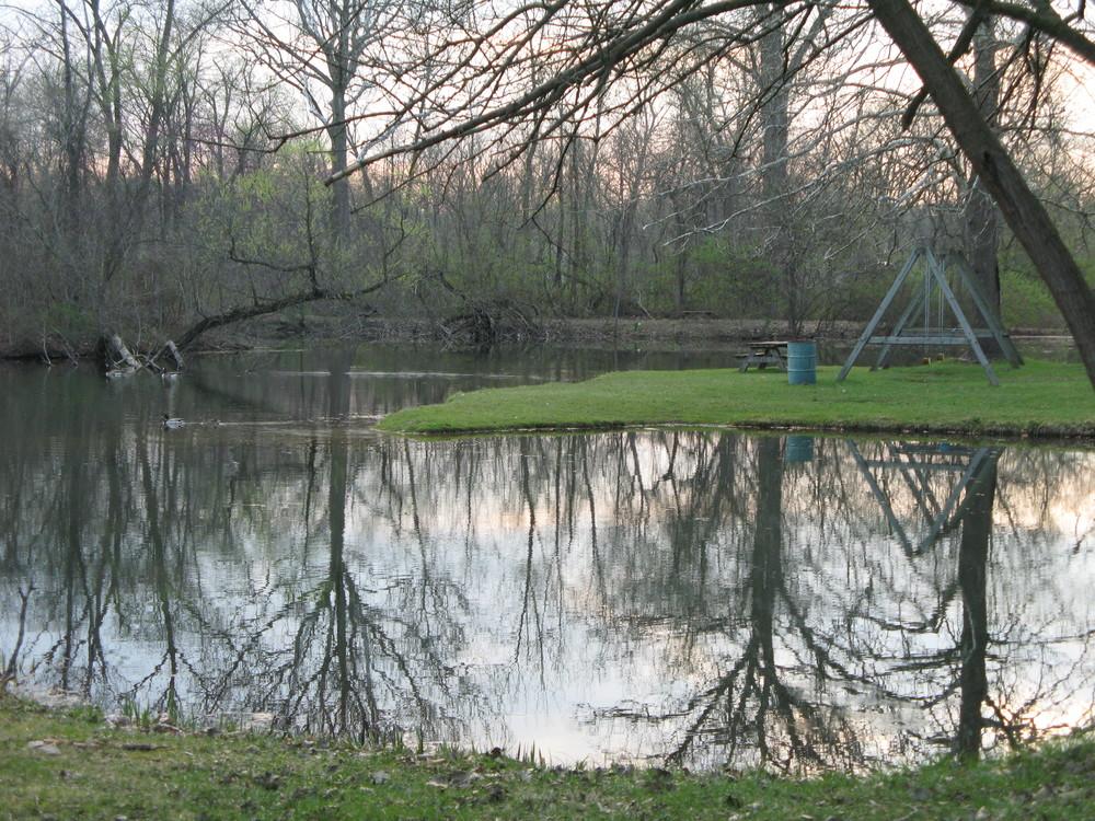Pond 4.JPG