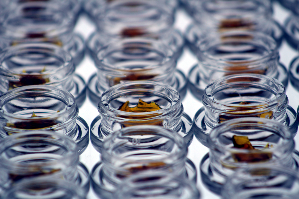 bottled 2.jpg
