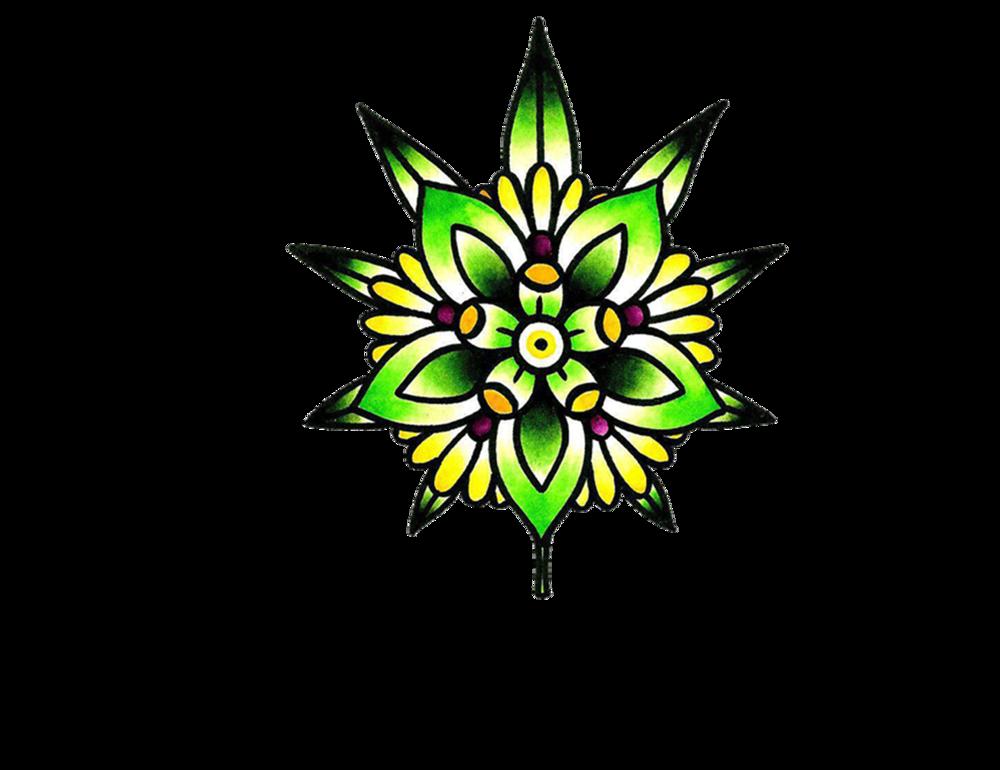 Drs Garden Logo.png