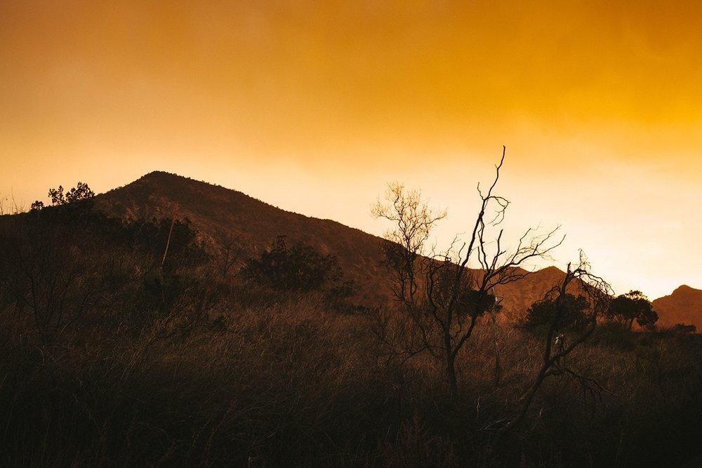 Edge-of-Texas-03.jpg