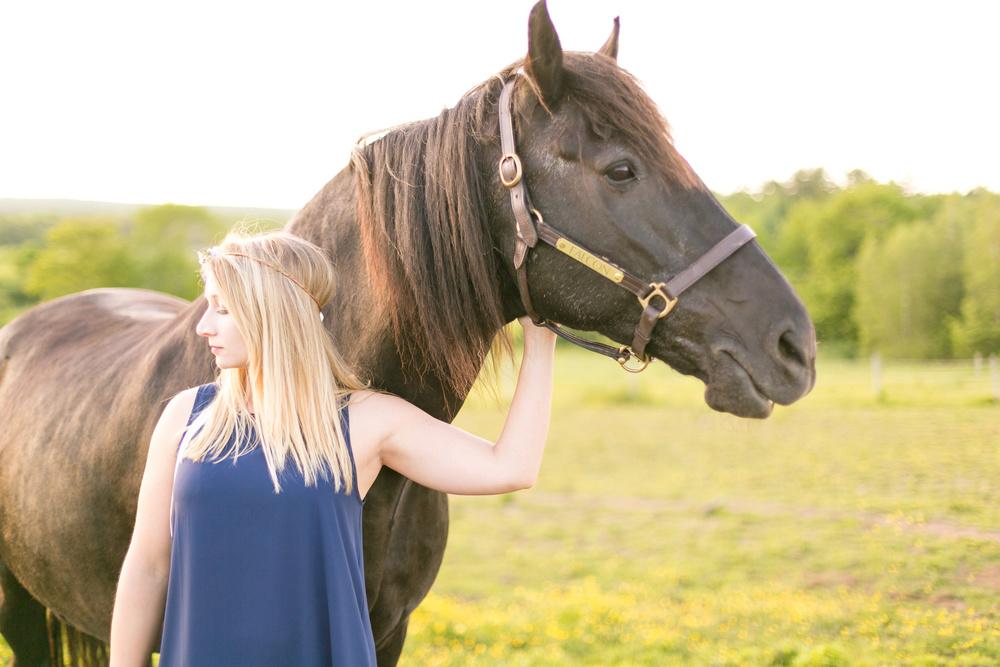 423-nova-scotia-horse-photography.jpg