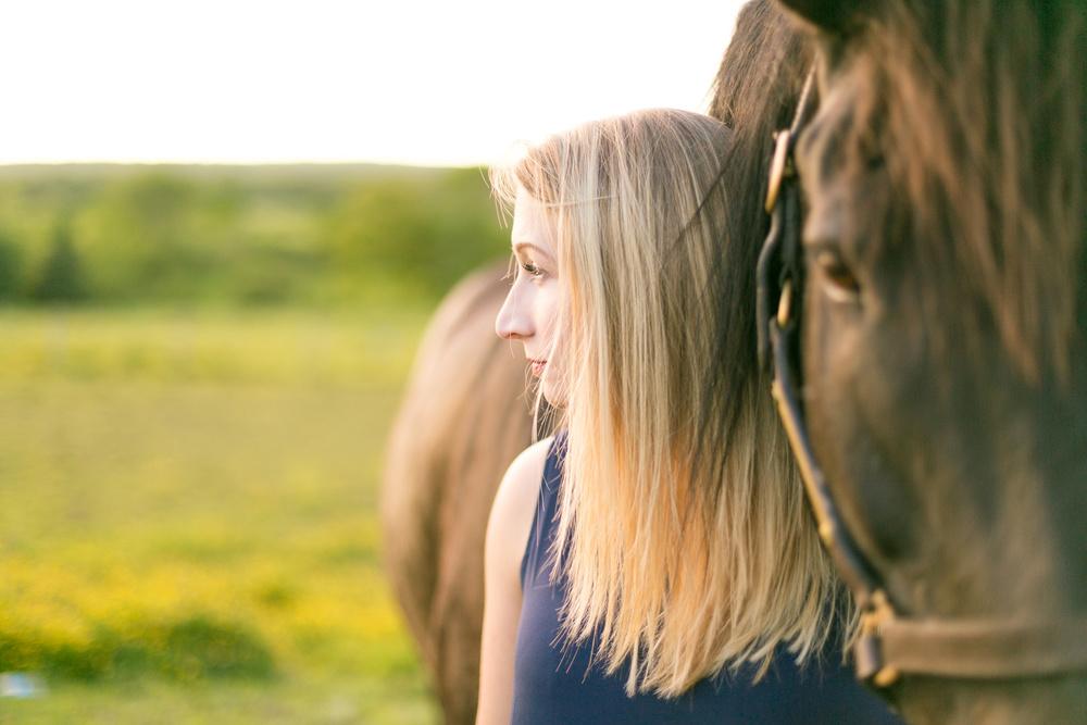 425-nova-scotia-horse-photography.jpg