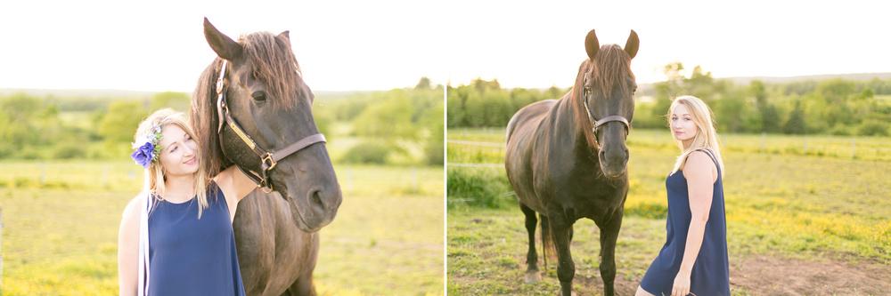 427-nova-scotia-horse-photography.jpg