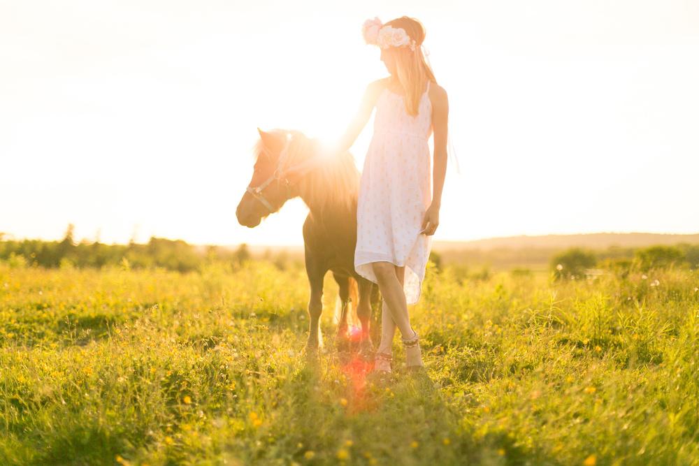 430-nova-scotia-horse-photography.jpg