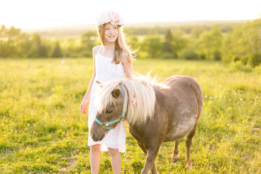 429-nova-scotia-horse-photography.jpg