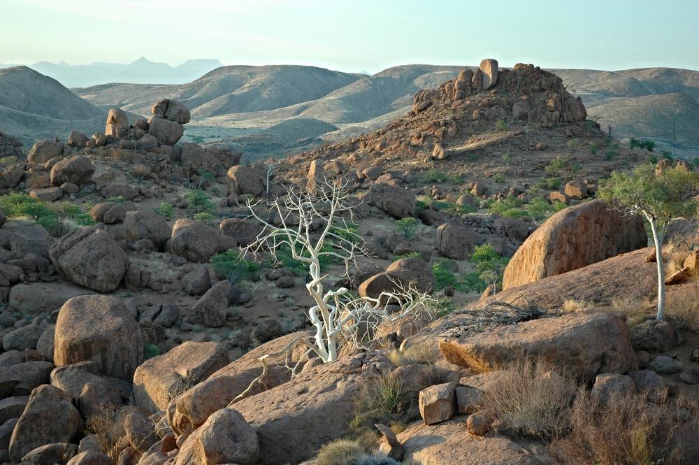 Namibia 1 187.JPG