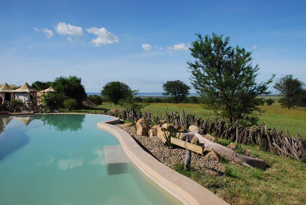 Sayari pool view.JPG