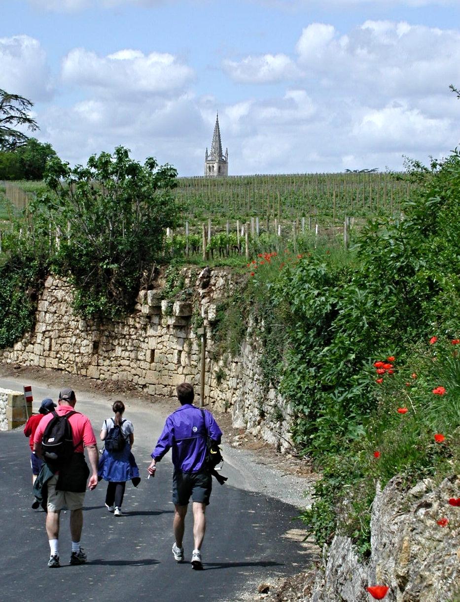 Walk to St Emilion 5.jpg