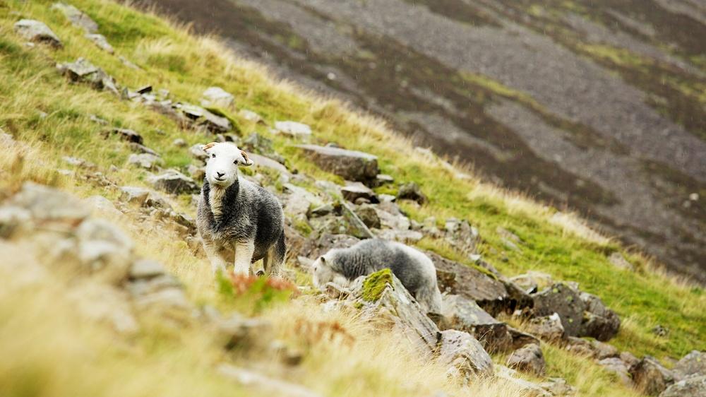 Lake District 001.jpg