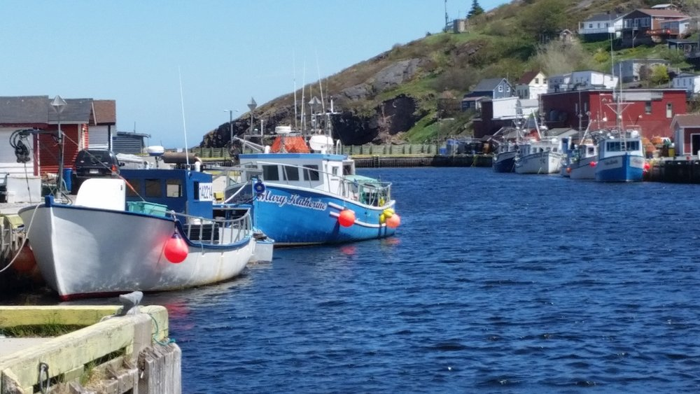 A Petty Harbour 20170616_140043.jpg