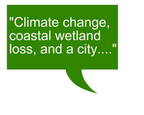 quote_beth_nola_climate_change