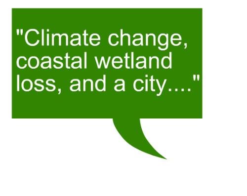 quote_beth_nola_climate_change