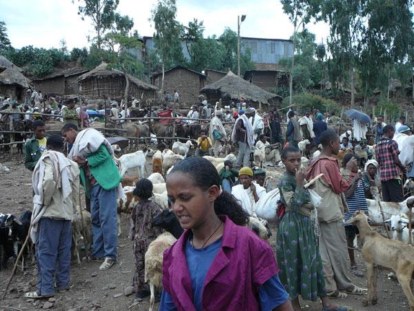 dc_ethiopia_market